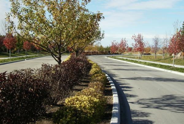 %Boise %landscape design